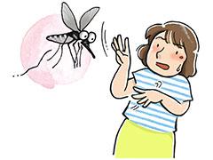 コロナ 蚊 から うつる